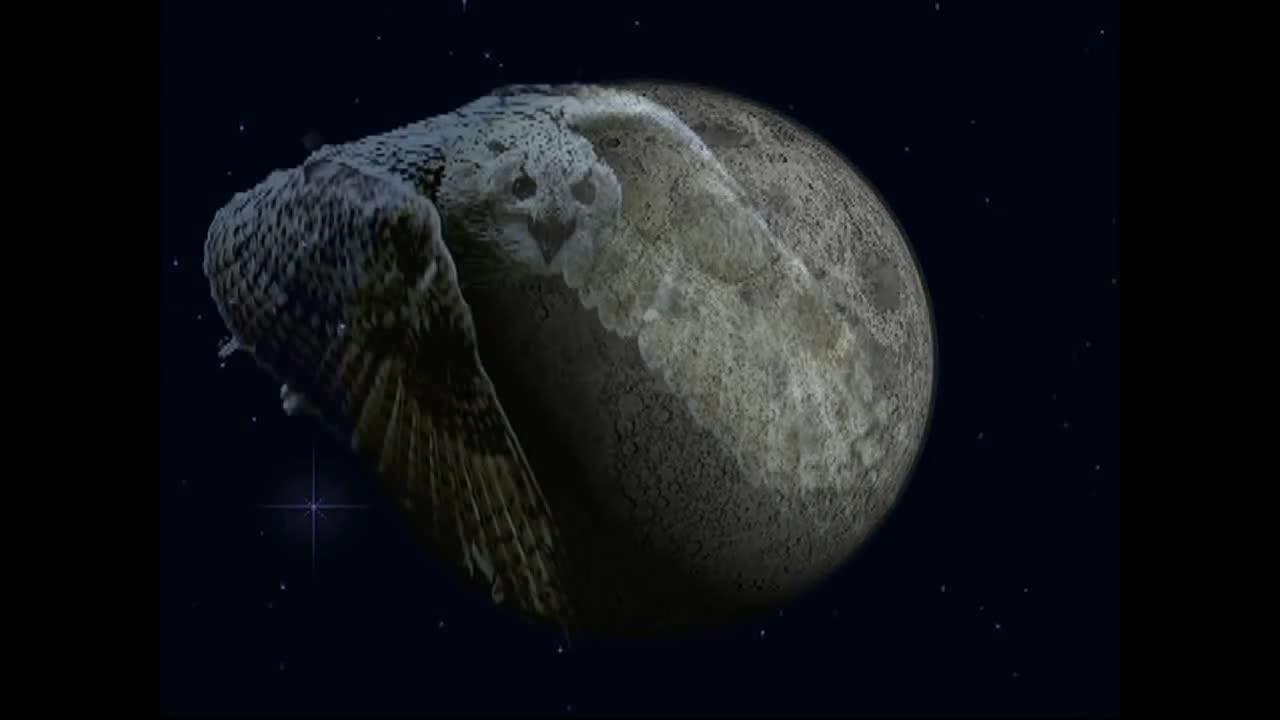 Шура холодная луна песня шура луна скачать, слушать в mp3.